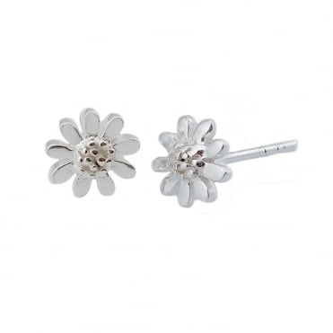 Silver 5mm Stud Earrings