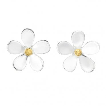 Silver & Gold 11mm Closed Petal Stud Earrings