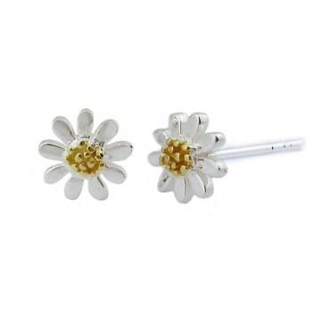 Silver & Gold 5mm Stud Earrings