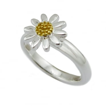 Silver & Gold Ring, Size P