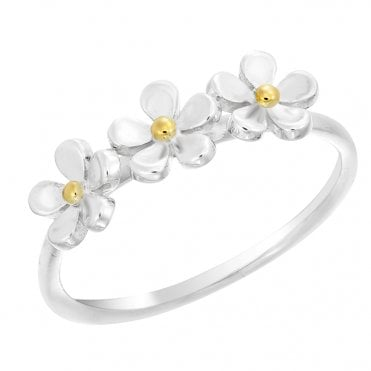 Silver & Gold Triple Ring, Size P