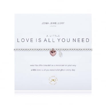 A Little Love Is All You Need Silver & Rose Gold Bracelet
