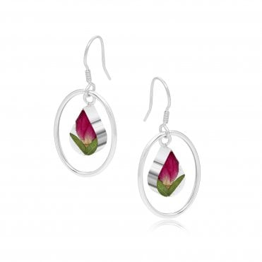 Rose Bud Silver Oval Surround Silver Earrings